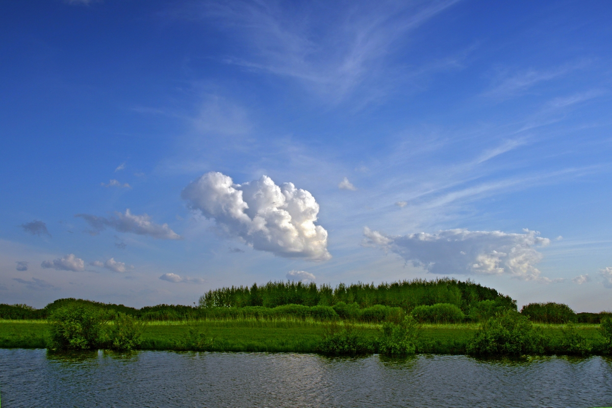 Река Мереть при впадении в Обь. Сузунский р-н Новосибирской области. Фото Е.Мухортова