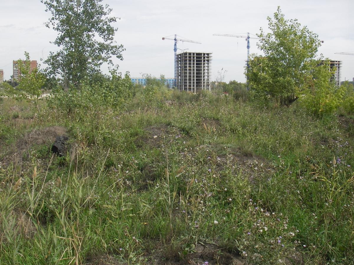 Строительство на месте поселения Турист-1 и поселение Турист-2, 2012 год.